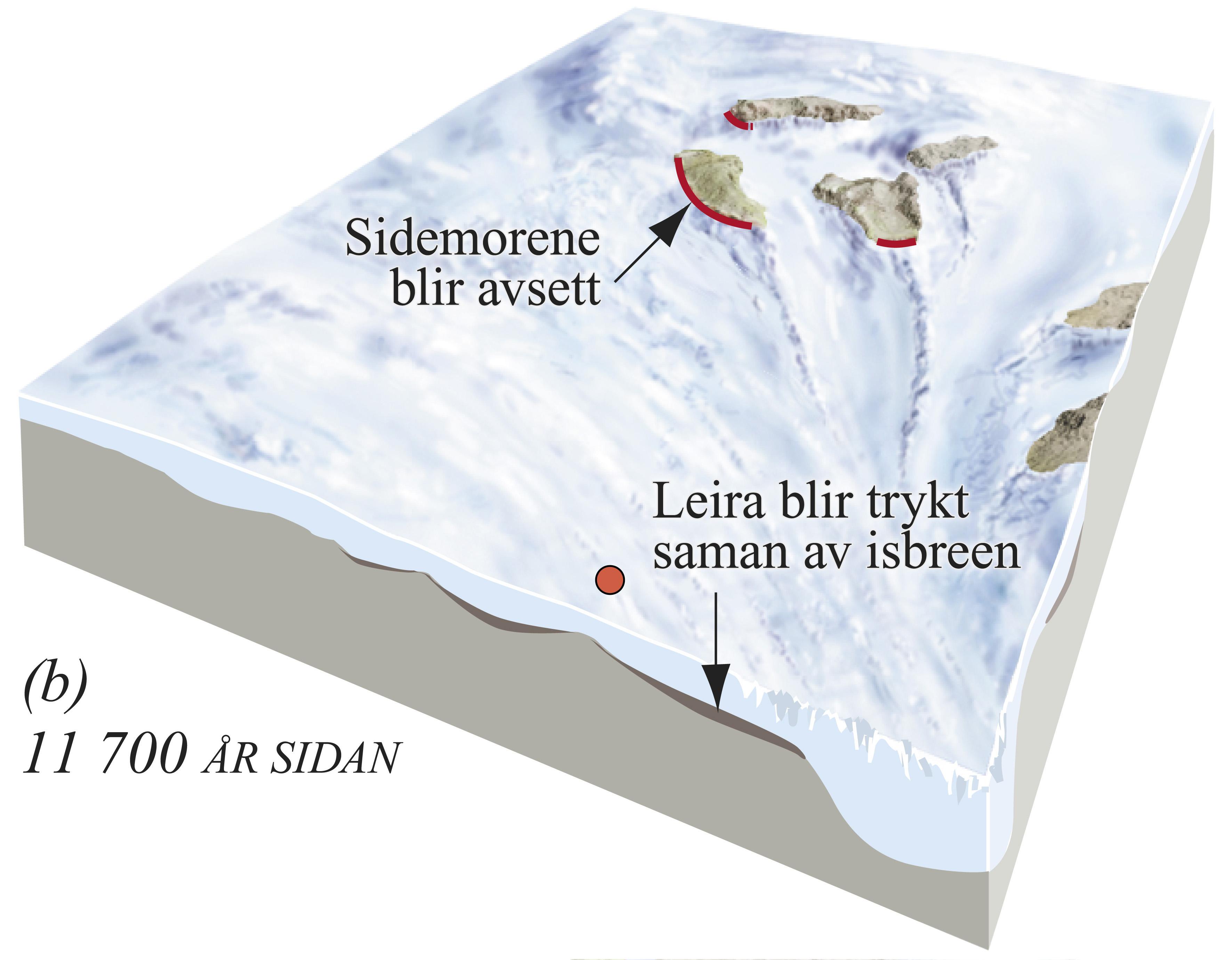 Utviklingsstadium i danninga av den harde leira i Ølve. (b) 11 700 år sidan