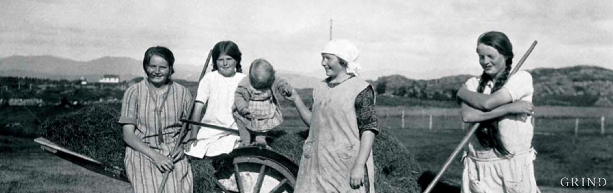 Høyonn med høyvogn i 1927