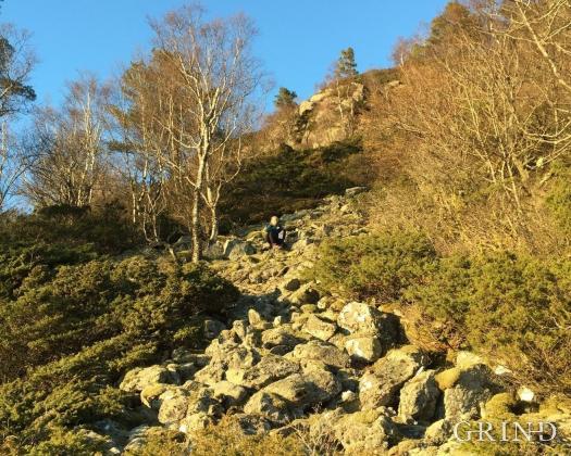Denne igjengrodde ura langs stien fra Sikthaugen til toppen av Løvstakken er avsetninger fra et skred som sannsynligvis gikk rett etter siste istid.
