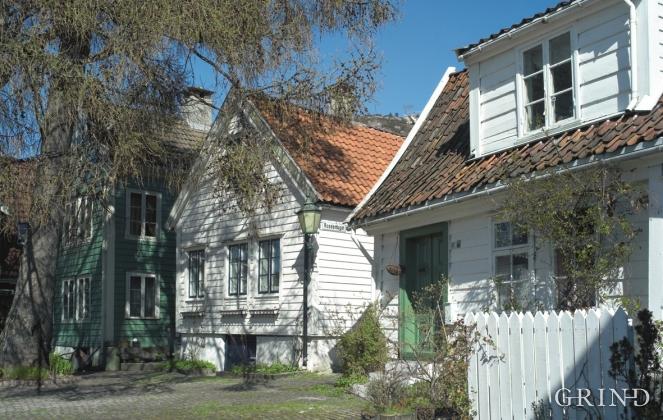 From Rosesmuggrenden, Bergen
