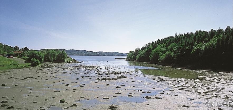 Fløksand - tidvassflate