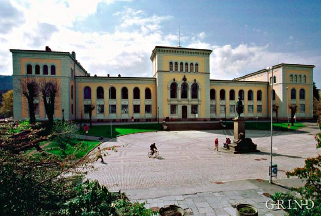 Naturhistorisk museum (Knut Strand)
