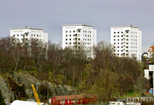 Fagernes (Knut Strand)