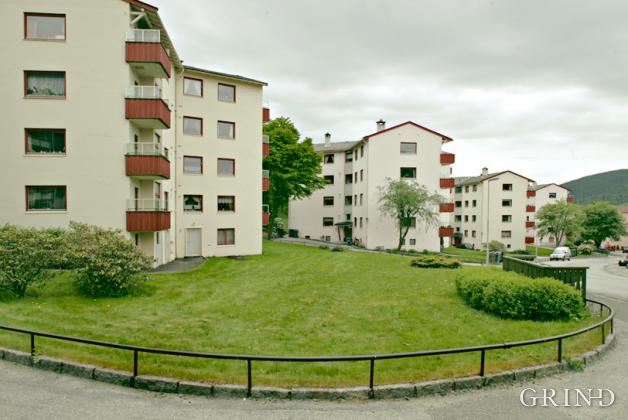 Stjernehus (Knut Strand)