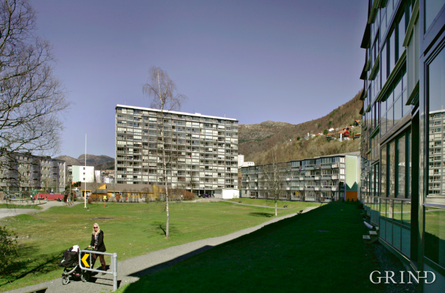 Mannsverk (Knut Strand)