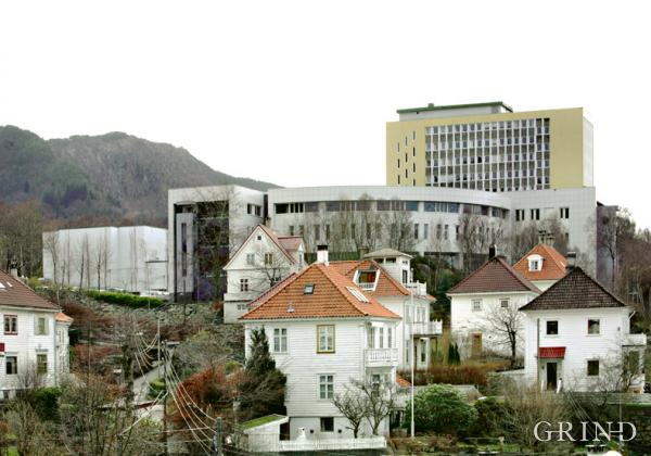 Norges Handelshøyskole (Knut Strand)