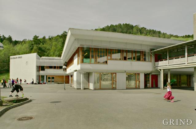 Seljedalen skole (Knut Strand)