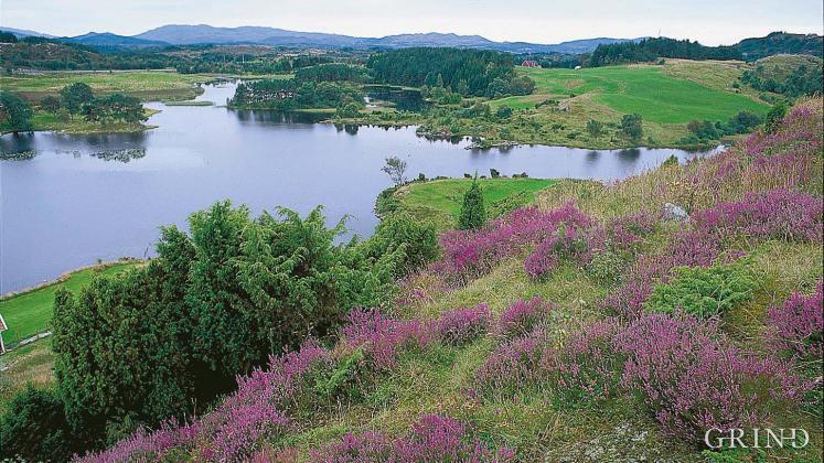 Bjellandsvatnet (Bjørn Moe)