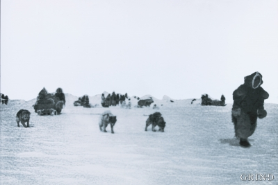 Arctic hunting folk on their way across the ice