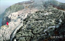 Bergartene på Litla Kalsøy i Austevoll