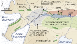 Map of the moraine ridges and forest types in Buardalen.