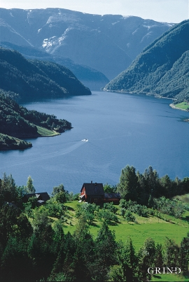 Ulvikafjorden
