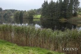 Reeds, Klebakkvatnet