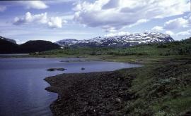 Frå Hamlagrøvatnet