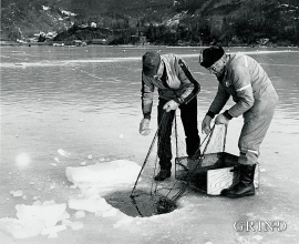 Når isen legg seg inst i Samnangerfjorden, er det gode dagar for isfiskarar.