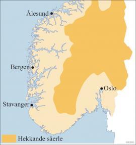 Såerla i Hardangervidda