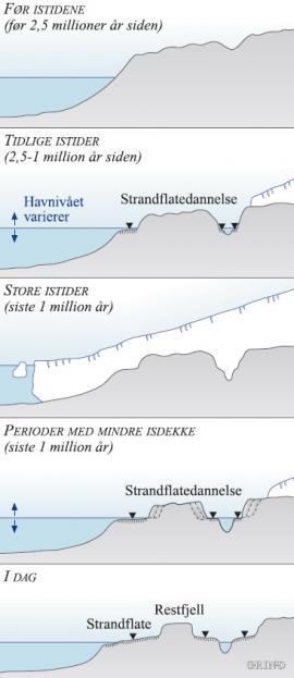 Prinsippskisse for dannelsen av strandflaten gjennom perioder med større eller mindre isutbredelse, de siste 2,5 millioner årene.