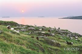 Frå Litla Kalsøy mot Fugløya