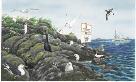 Sjøfuglane hekkar helst på øyar eller i fuglefjell.