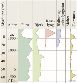 Pollen diagram from Fossli.