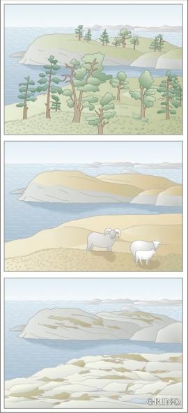 Endringar i landskapet på vestkysten av Sotra gjennom tusenåra: frå skog til teppemyr til nake fjell. Motivet er frå nordsida av Algrøyna, mot Kråkøyna