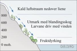 Prinsipp for spreiing av frostmålarar ned dalsida