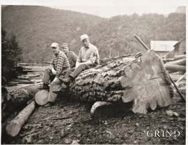 Kvild i tømmerarbeidet ved saga på Kjerland