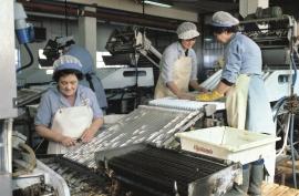 Hermetikkindustri, Sunde i Kvinnherad