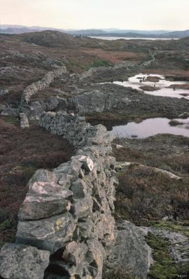 Tjeldstø