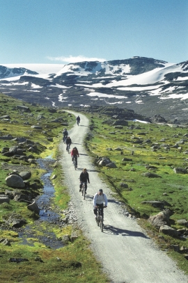 The old construction road from Finse to Myrdal is popular as a cycle route.