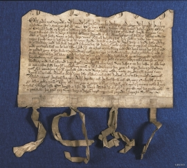 The Bleie diploma from 1293