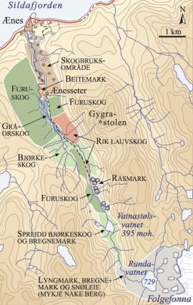 Vegetasjonskart over Ænesdalen.