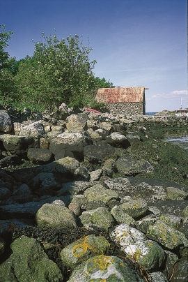 The stone blocks on the beach at Husebø have been washed out of the Herdla moraine by the waves. The blocks are used in building stone walls and boat houses.