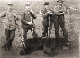 Hordalands sist felte bjørn