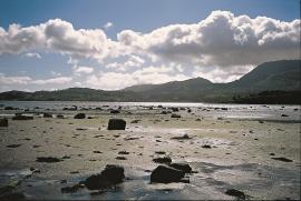 Lausmassane i strandbeltet på Leiro, Huglo