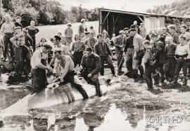 Kvalvågen i Skogsvågen 20.juni 1960