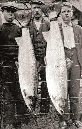 Laks på 20–25 kilo var ikkje uvanleg i Ekso på 1920-talet