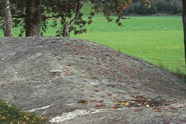 Rock inscriptions at Helgaberget.