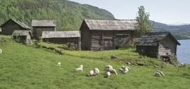 Nesheimstunet, Voss