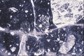 Ground up bedrock in the Valen Fault, seen under a microscope.