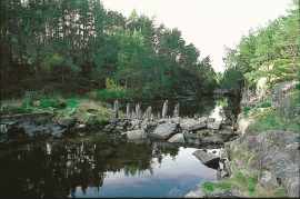 Lurøyane