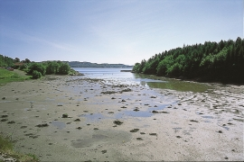 Fløksand - Tidal flats