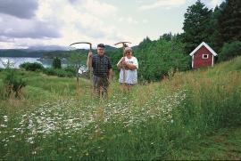 Anne and Reidar Skorpen during the hay harvest.
