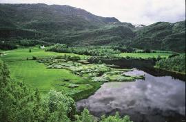 Lake Nesheimvatnet