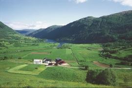 From Skjervheim toward Lake Myrkdalsvatnet.