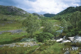 Kråmyrane (Svein Nord)