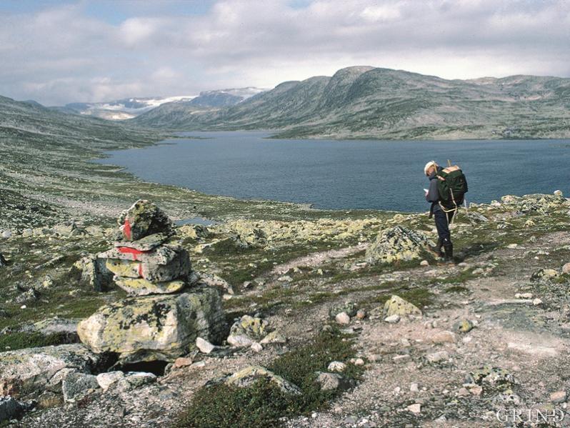 Finnsbergvatnet ved Hardangerjøkulen