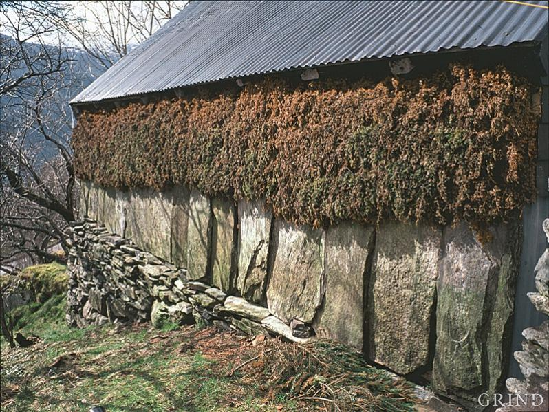 Juniper-clad haysheds at Osterøy