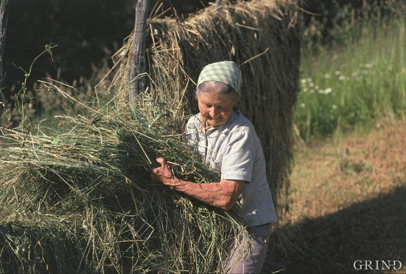 On many farms the women were the main participants in the daily operations