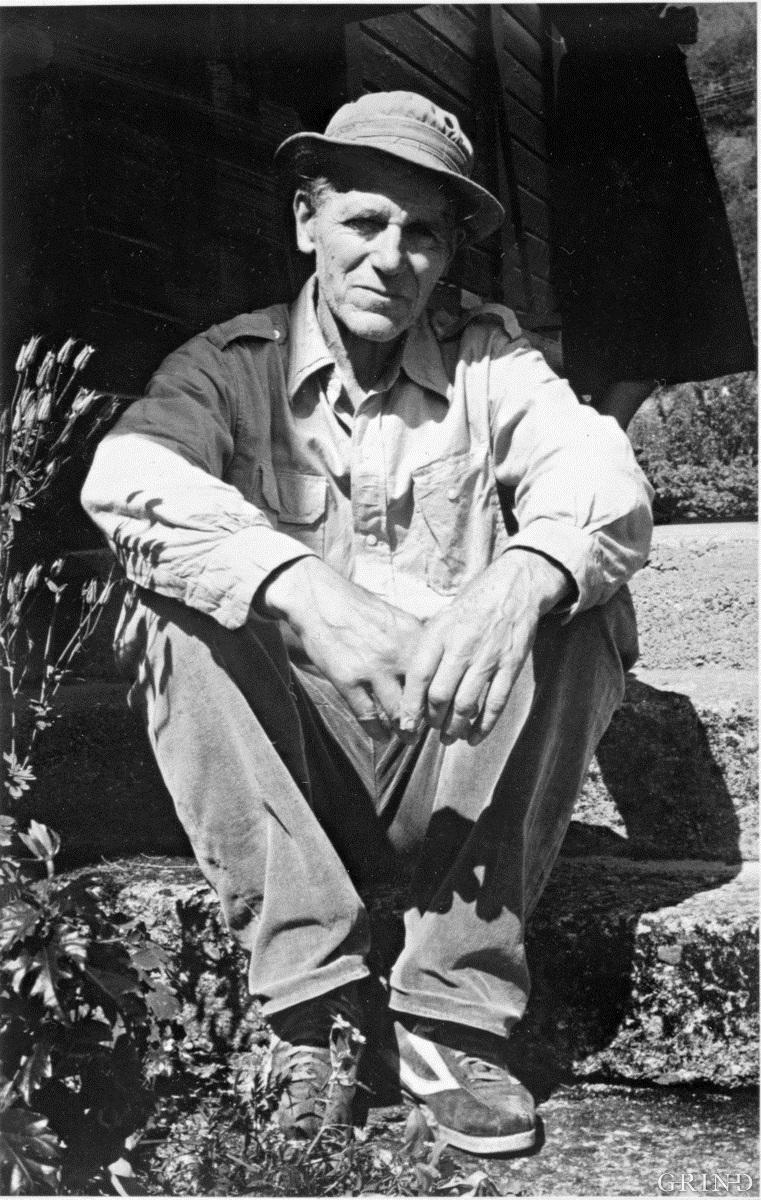 Olav H. Hauge, 1982